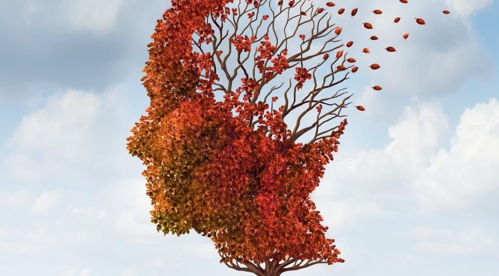 Choroba Parkinsona (Parkinsonizm) – diagnostyka za pomocą węchu na początkowym etapie choroby?